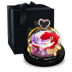 Preserved rose - gift