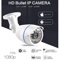 720p / 1080p 1.0MP - 2.0 MP Outdoor IP Security Camera Waterproof Night Vision