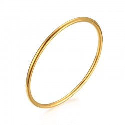 Women's Elegant Bangle Bracelet